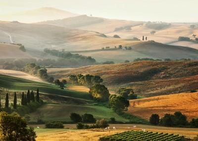 Schlösser Wein Tour in der Toskana